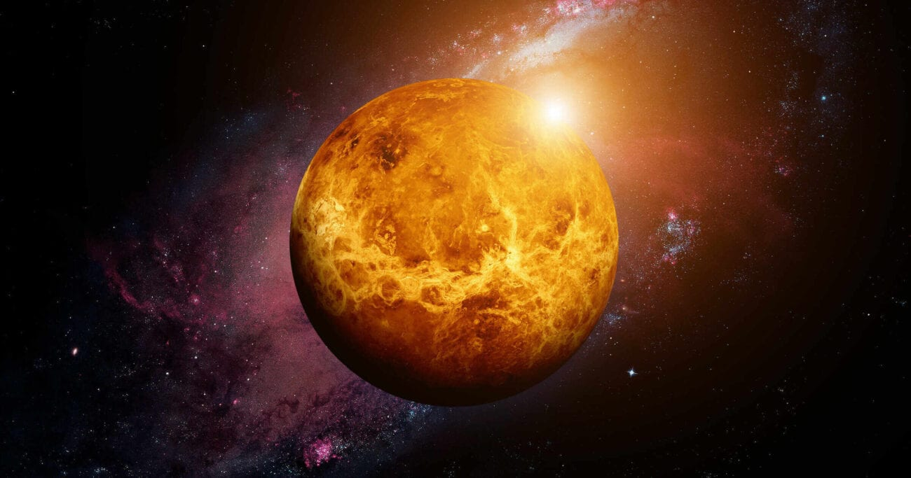 Scientists have reason to believe the surface of Venus may foster life. Here's everything we know about signs of life recently discovered on Venus.