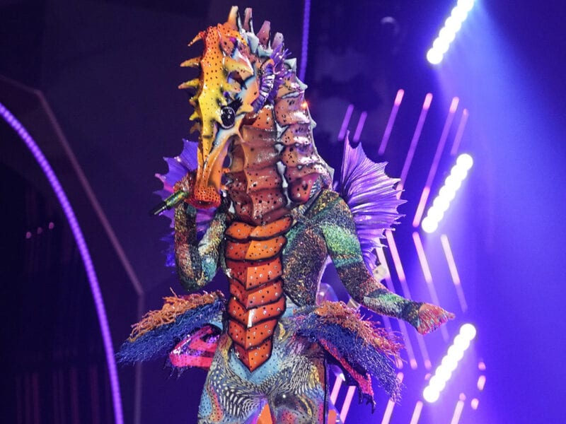 Over half of this season's Fox's 'The Masked Singer' contestants have been unmasked. Who's the seahorse? Let's find out.